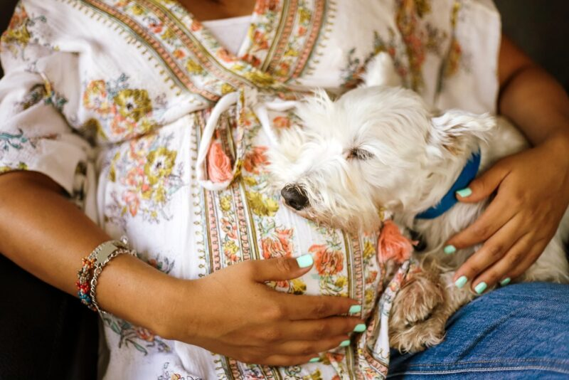 How your dog can help you meet your pregnancy fitness goals
